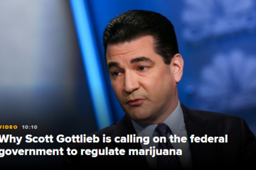 Ex-FDA chief Scott Gottlieb says he is 'skeptical' that vaping nicotine causes lung cancer
